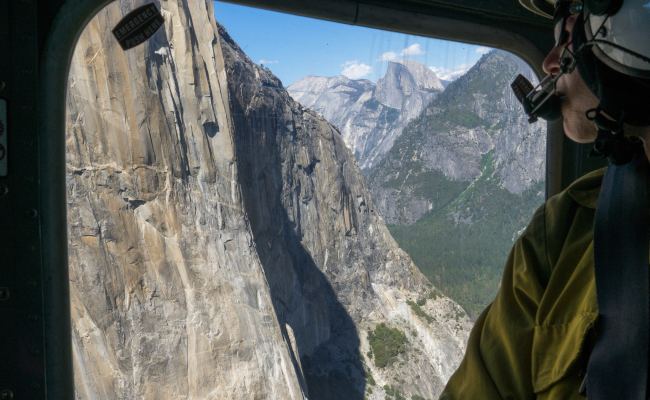 Accident Report: Nose, El Cap